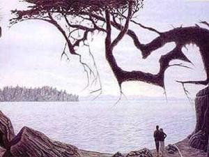 when you see it trees